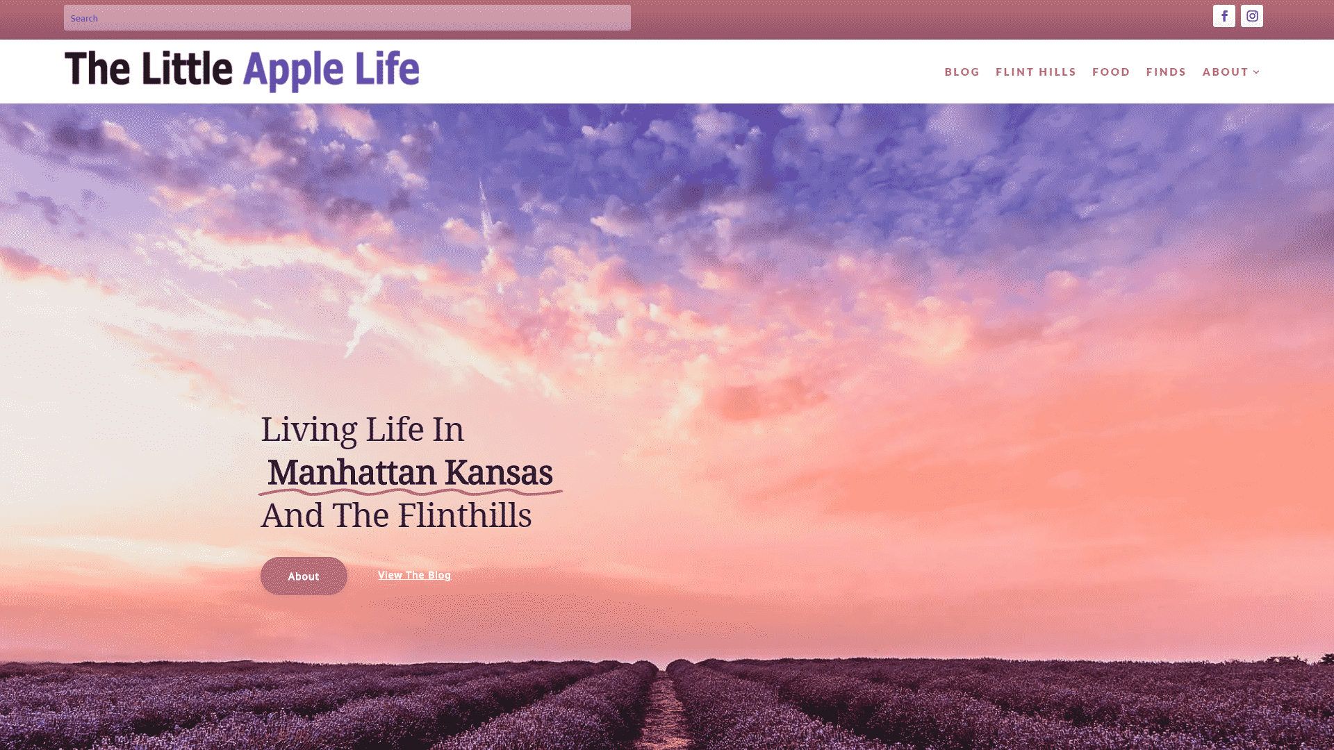 The Little Apple Life Blog